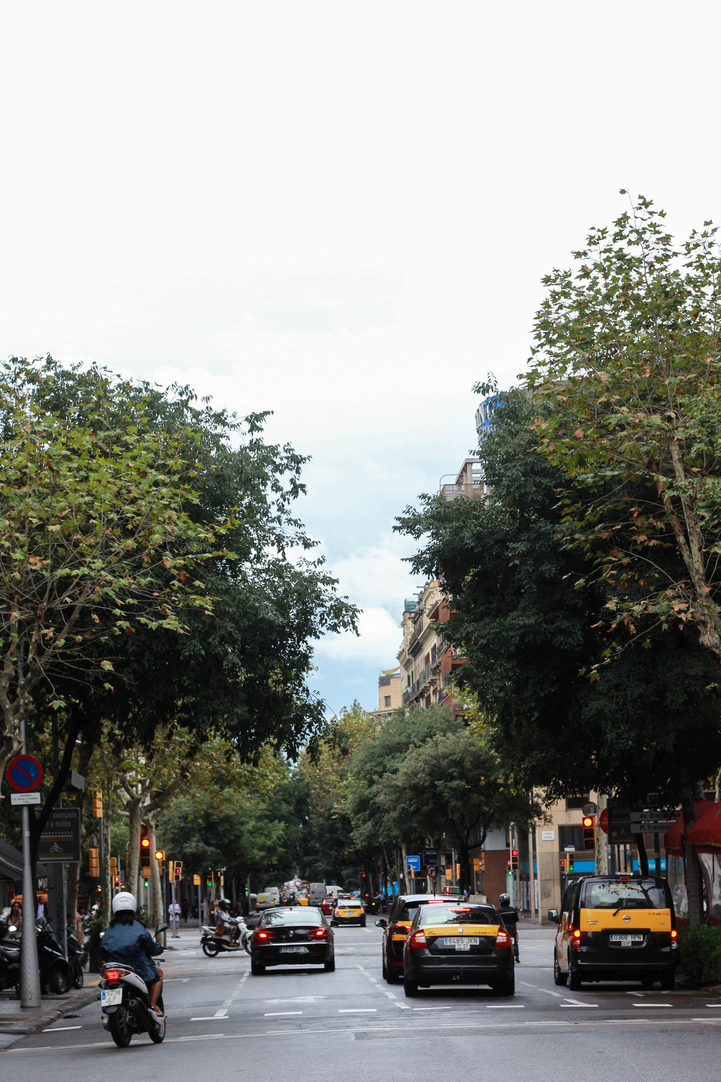 Spain-248.jpg