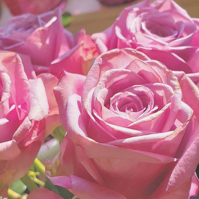 𝙞𝙛𝙚𝙚𝙡𝙨𝙤𝙡𝙤𝙫𝙚𝙙 💗 / / / / / / / / #isthisreallife #roses #gratitude #ithinkifoundit  #truelove #flowerpower #iloveyou