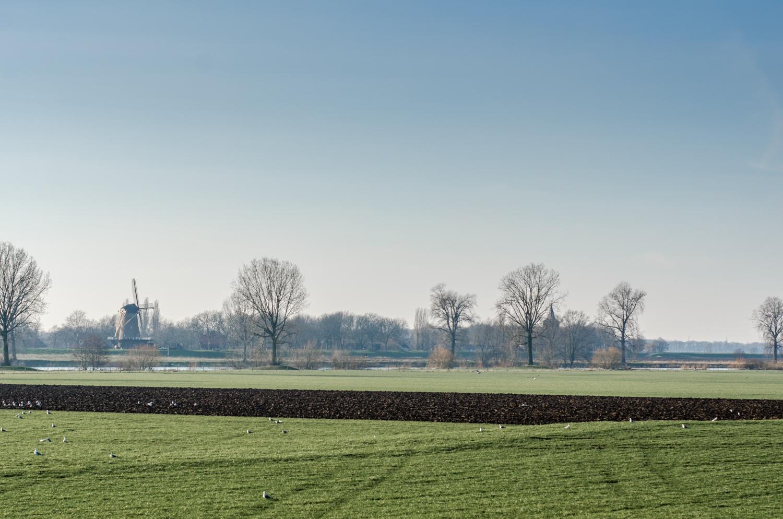 Batenburg-3.jpg