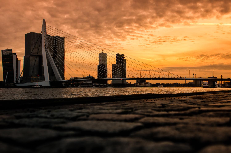 Erasmus bridge at Rotterdam. Exposure: 1/125 sec @ f/4,0 ISO 200, 24 mm