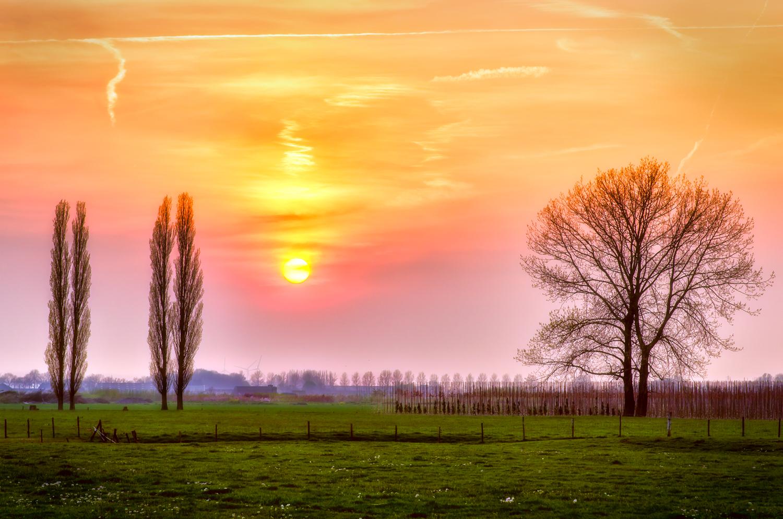 Zonsondergang; het gouden uur. Exposure: 1/250 sec. @ f/3.5 ISO 100, 85 mm.