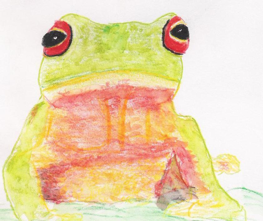 Animal 6 frog.jpg