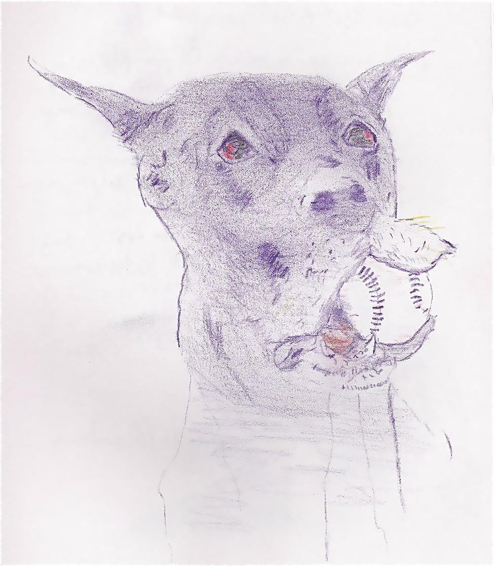 Animal 5 Dog and ball_2.jpg