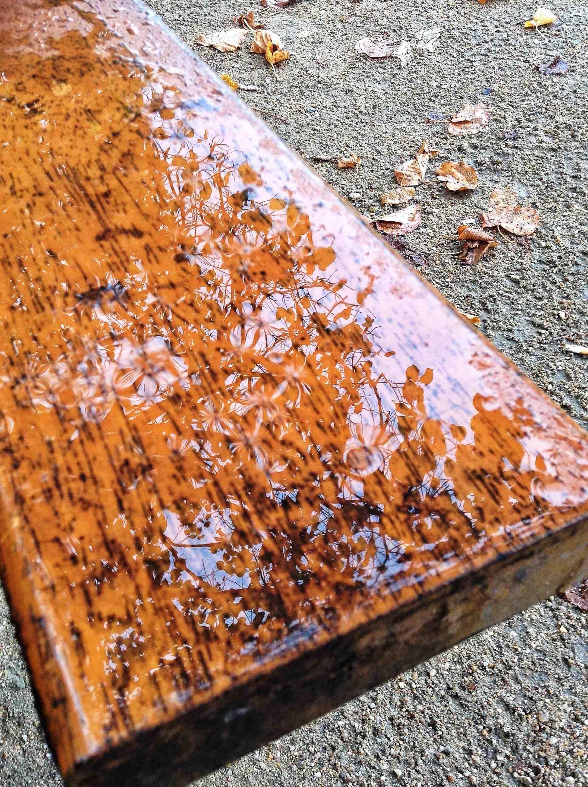 wet bench.jpg
