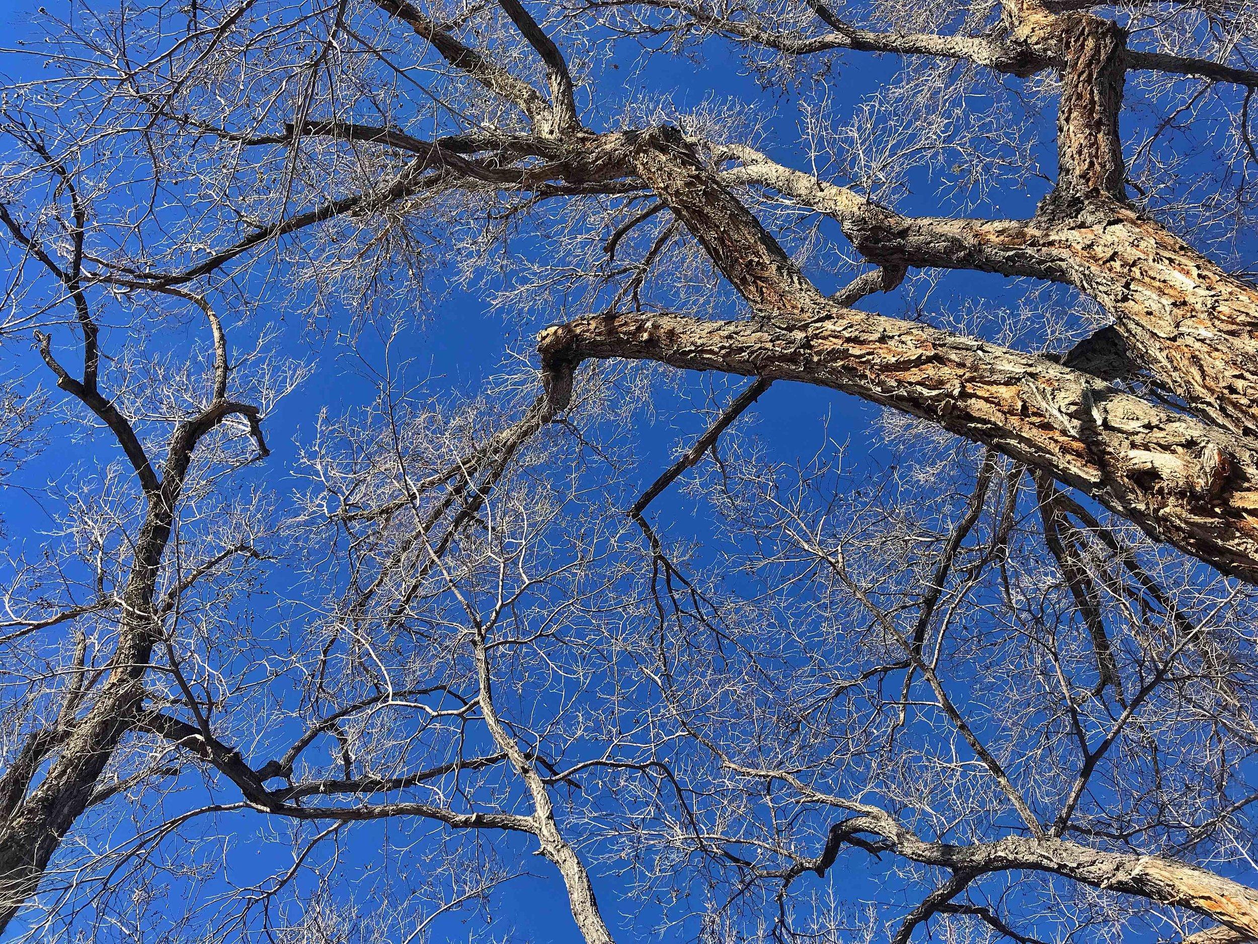 Snapseed 7.jpg
