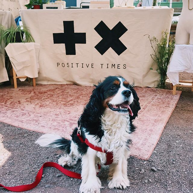Come find us this Sunday @bkflea We'll be there 10am-6pm ➕✖️ You might even get a chance to see our favorite furry employee 🐶