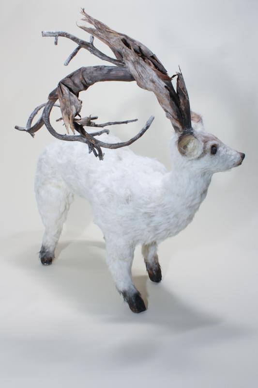 North American Pygmy Deer