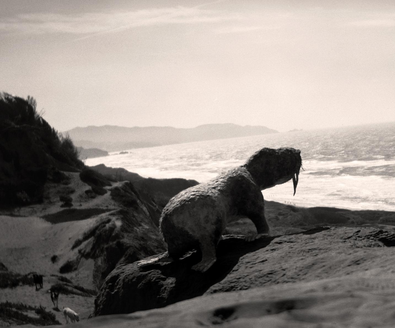 Pygmy Land Walrus