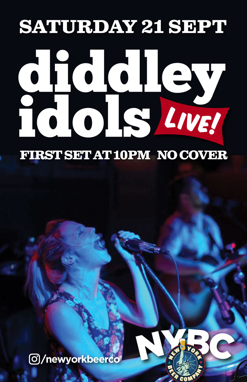 best nyc party band diddley idols live