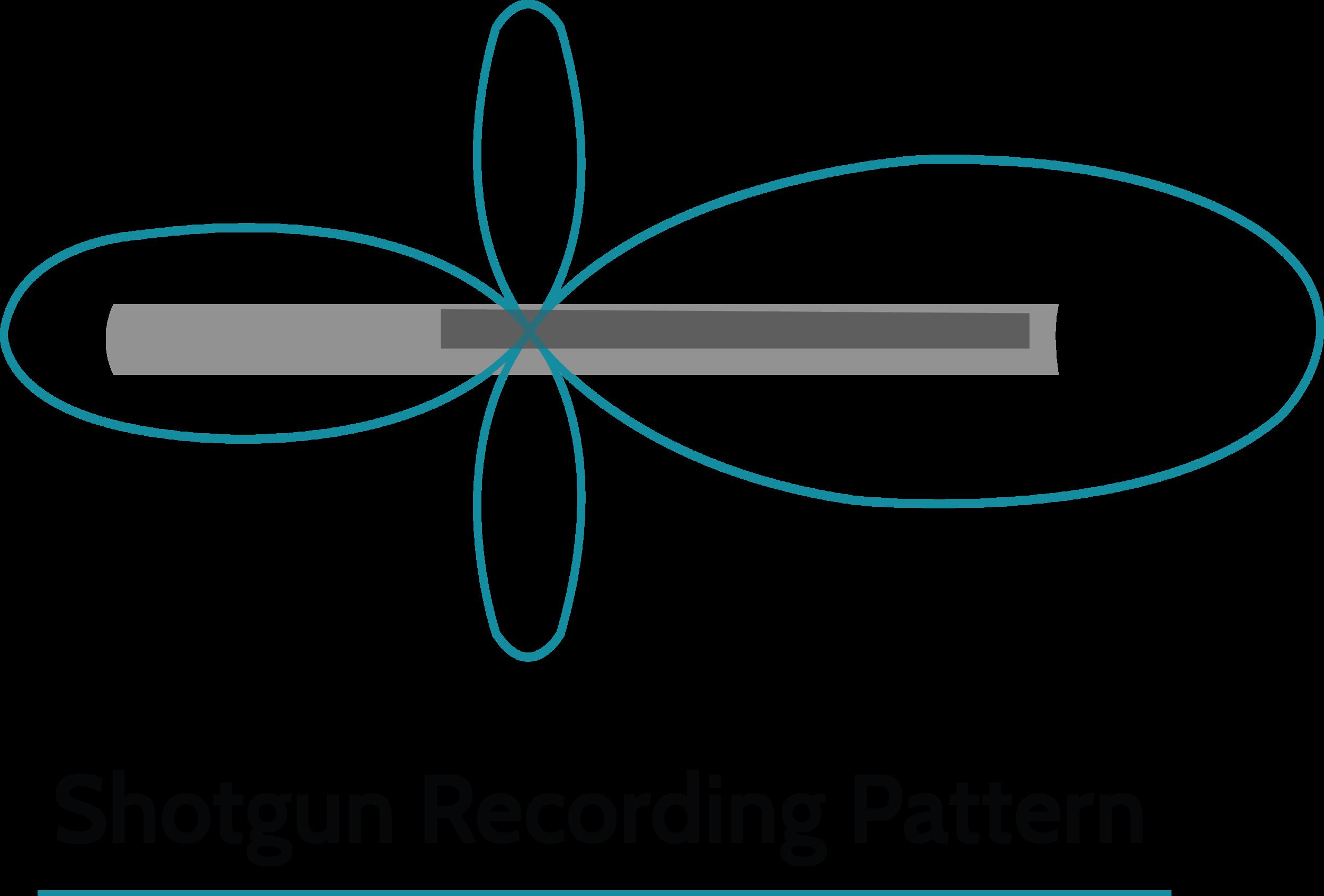Shotgun-Recording-Pattern.png