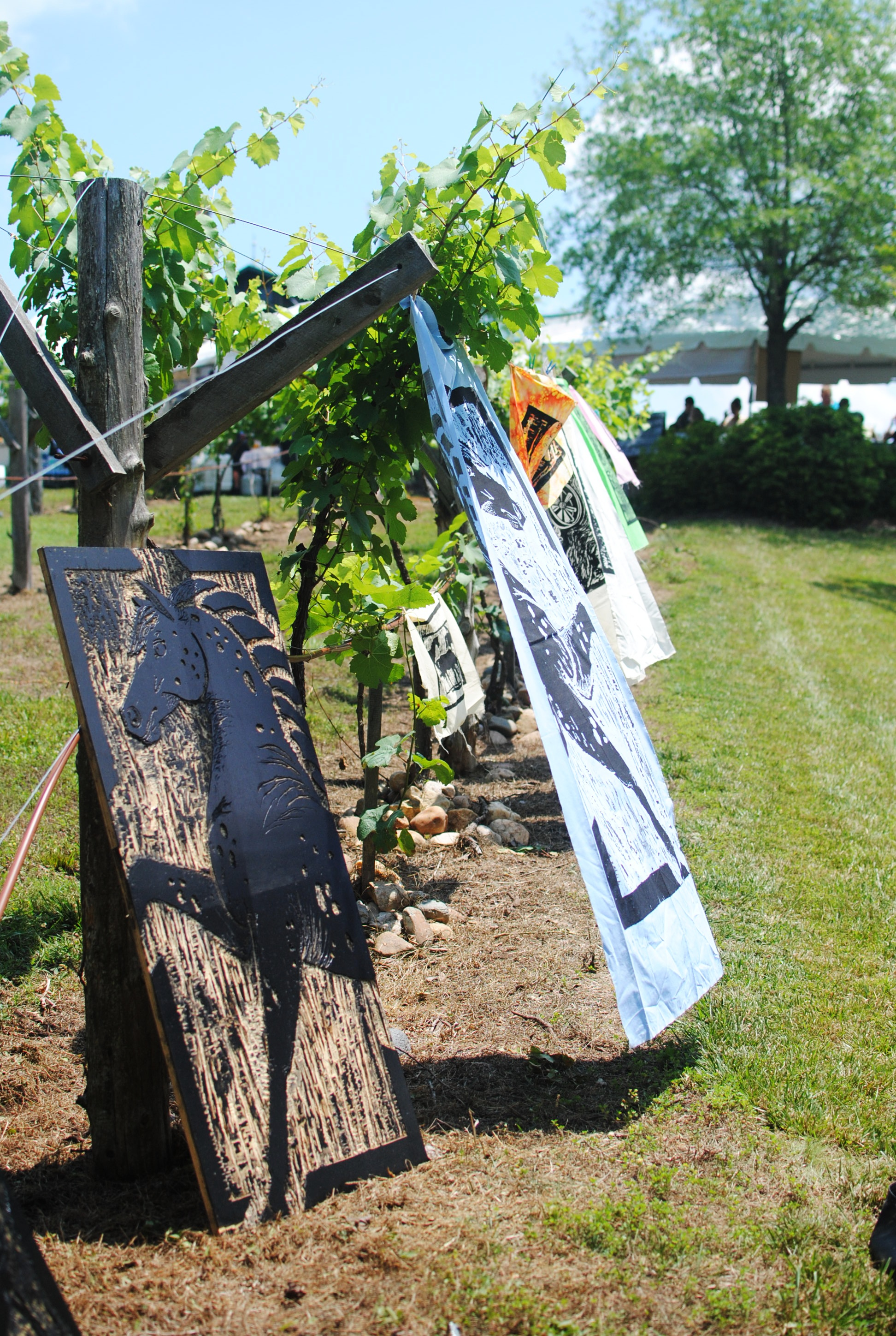 Prints drying in vineyards.JPG