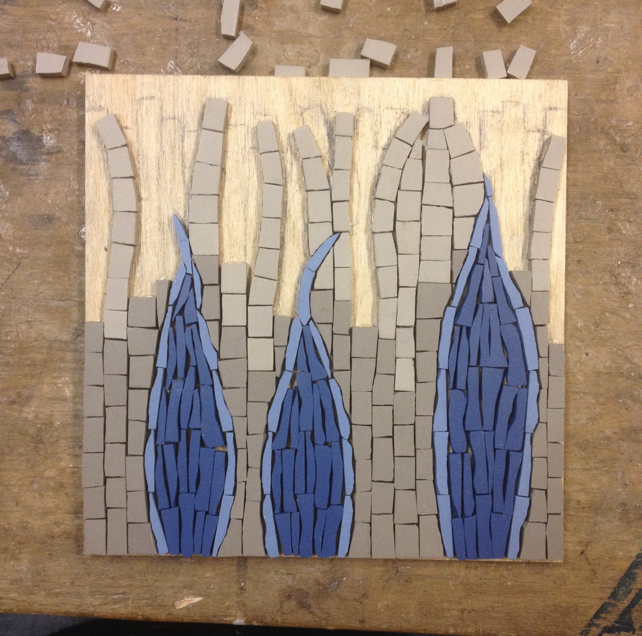 Rods & cones/ photoreceptor cells mosaic in process
