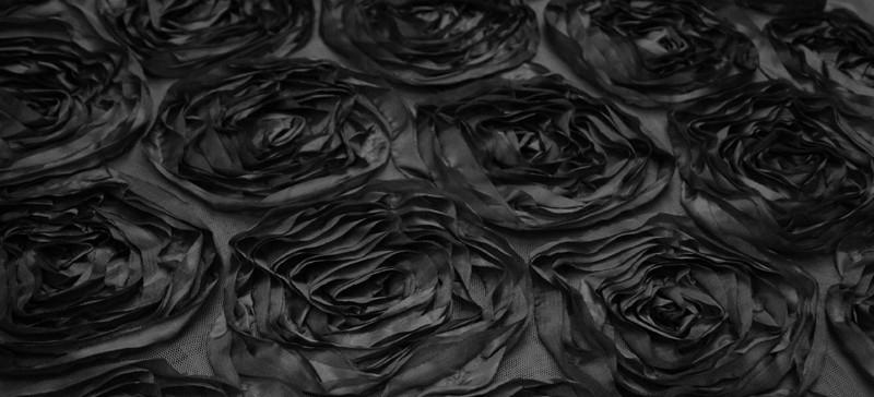 LotusBlack.jpg