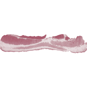 Bacon-Strip-Bumper-Sticker-(7178).jpg