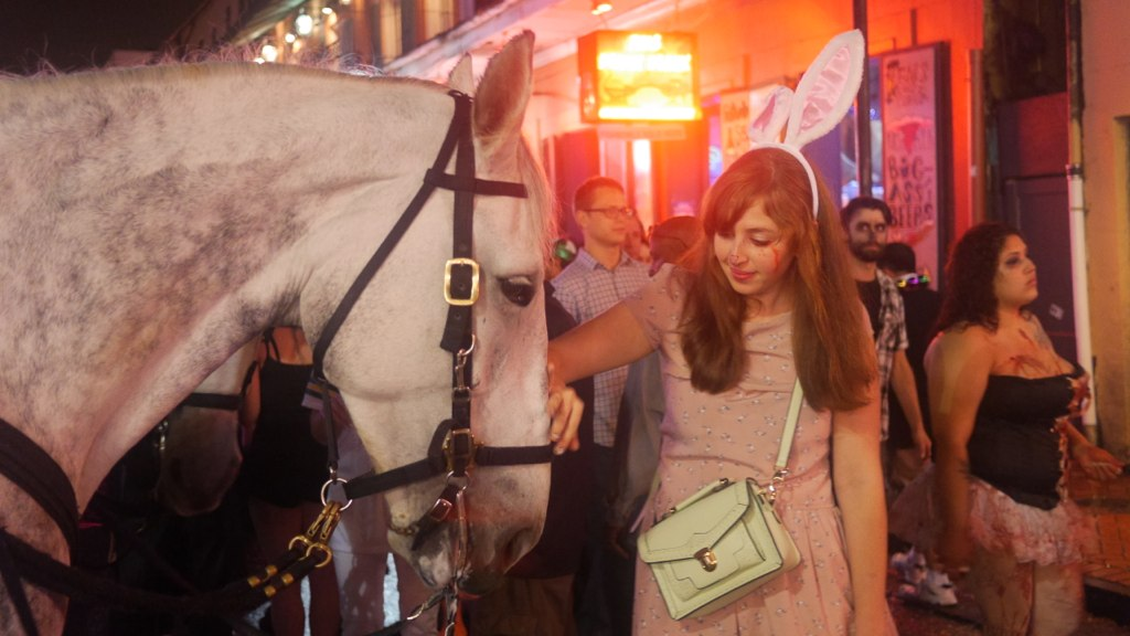 I found a horse on Bourbon Street!