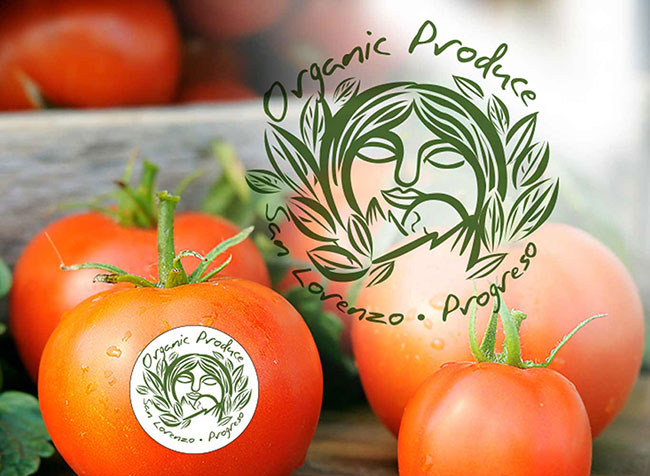 organic_produce_label.jpg