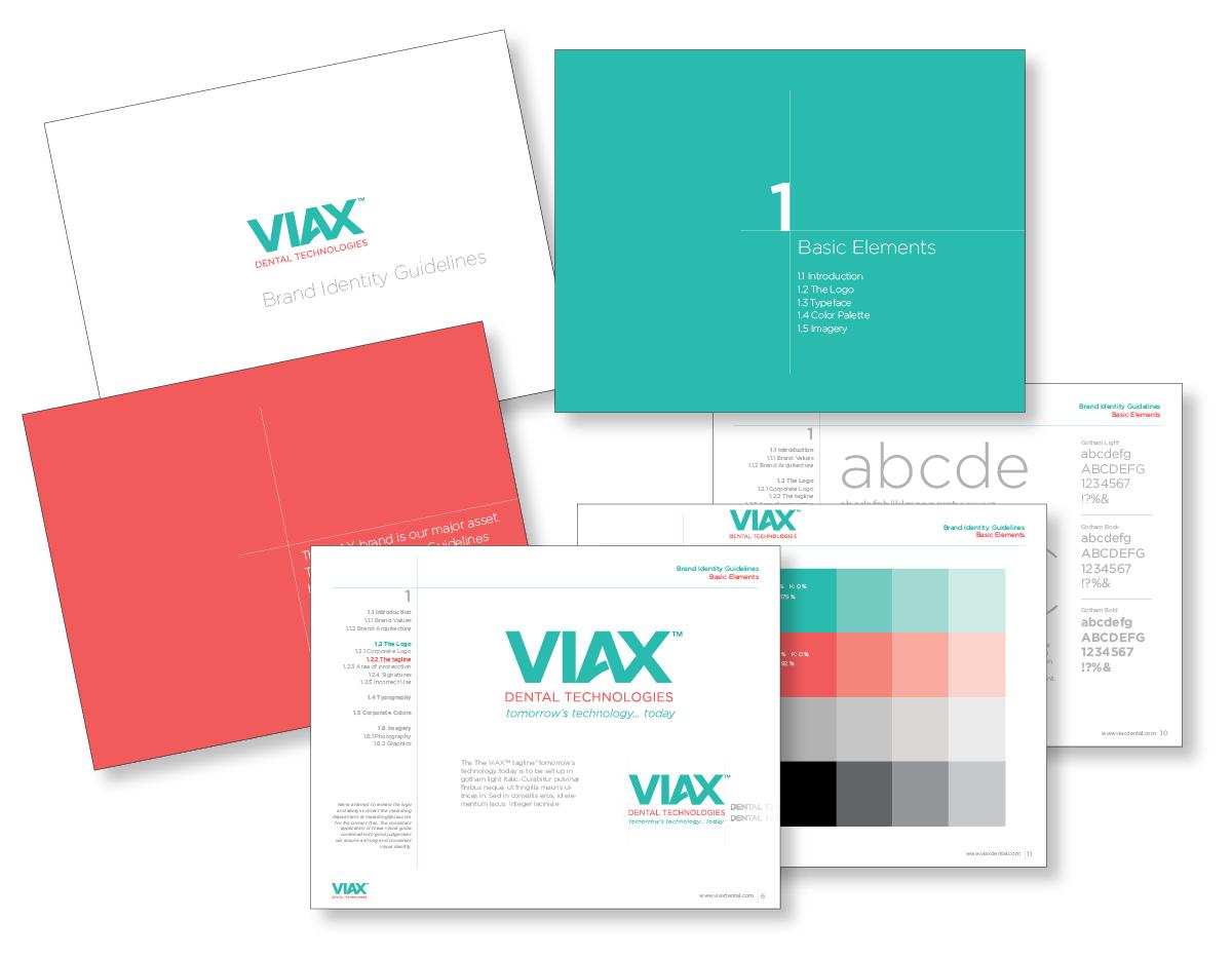 viax-forweb4.jpg