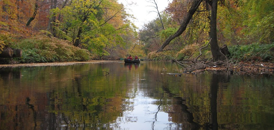 Paddling on the Bronx River by the  Bronx River Alliance