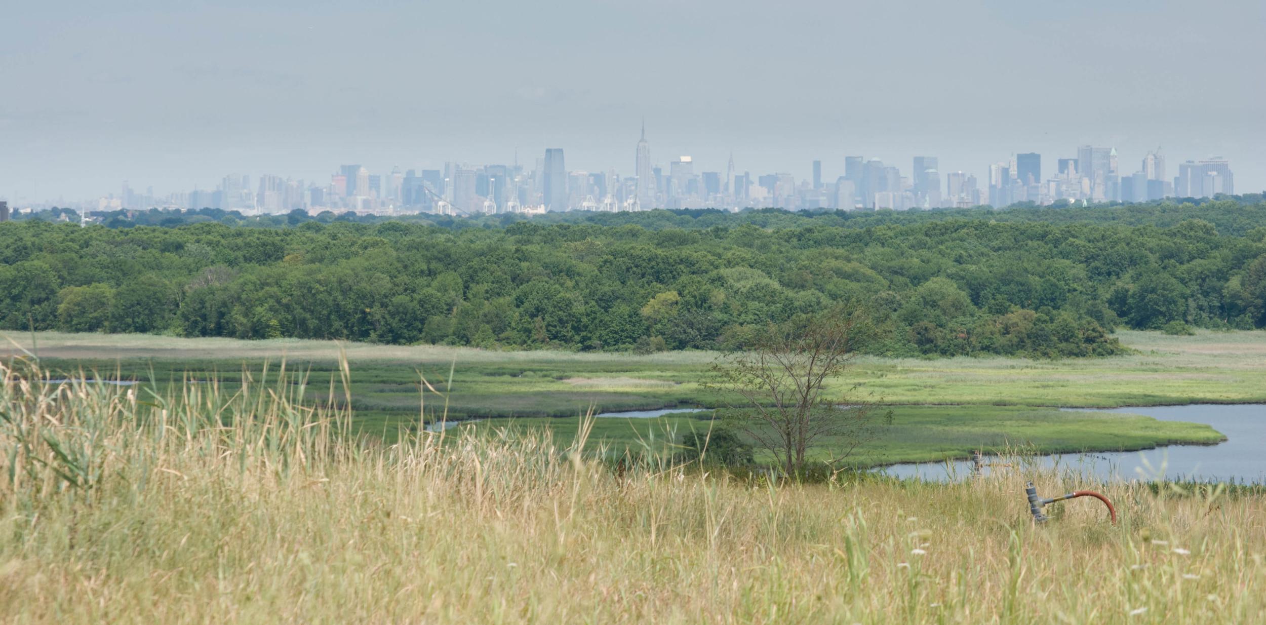 Freshkills Park and the Manhattan skyline. Photo by Kristine Paulus