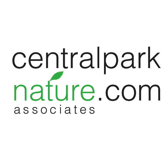Central Park Nature Square.png