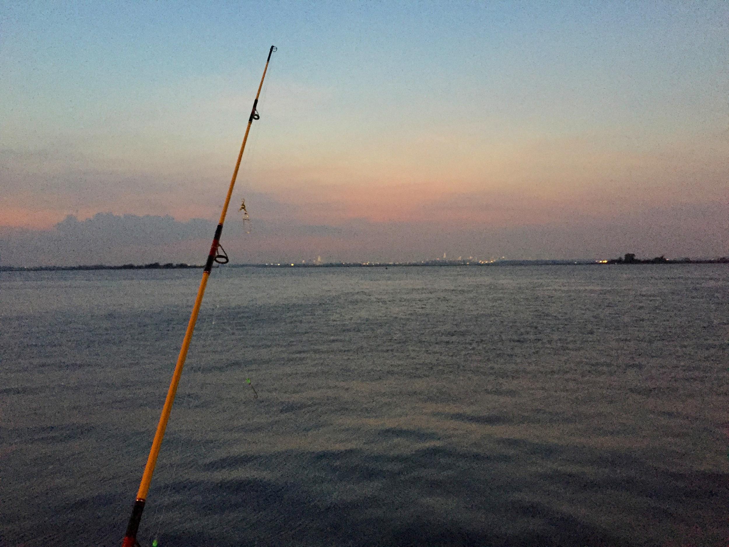 Fishing line and skyline.JPG