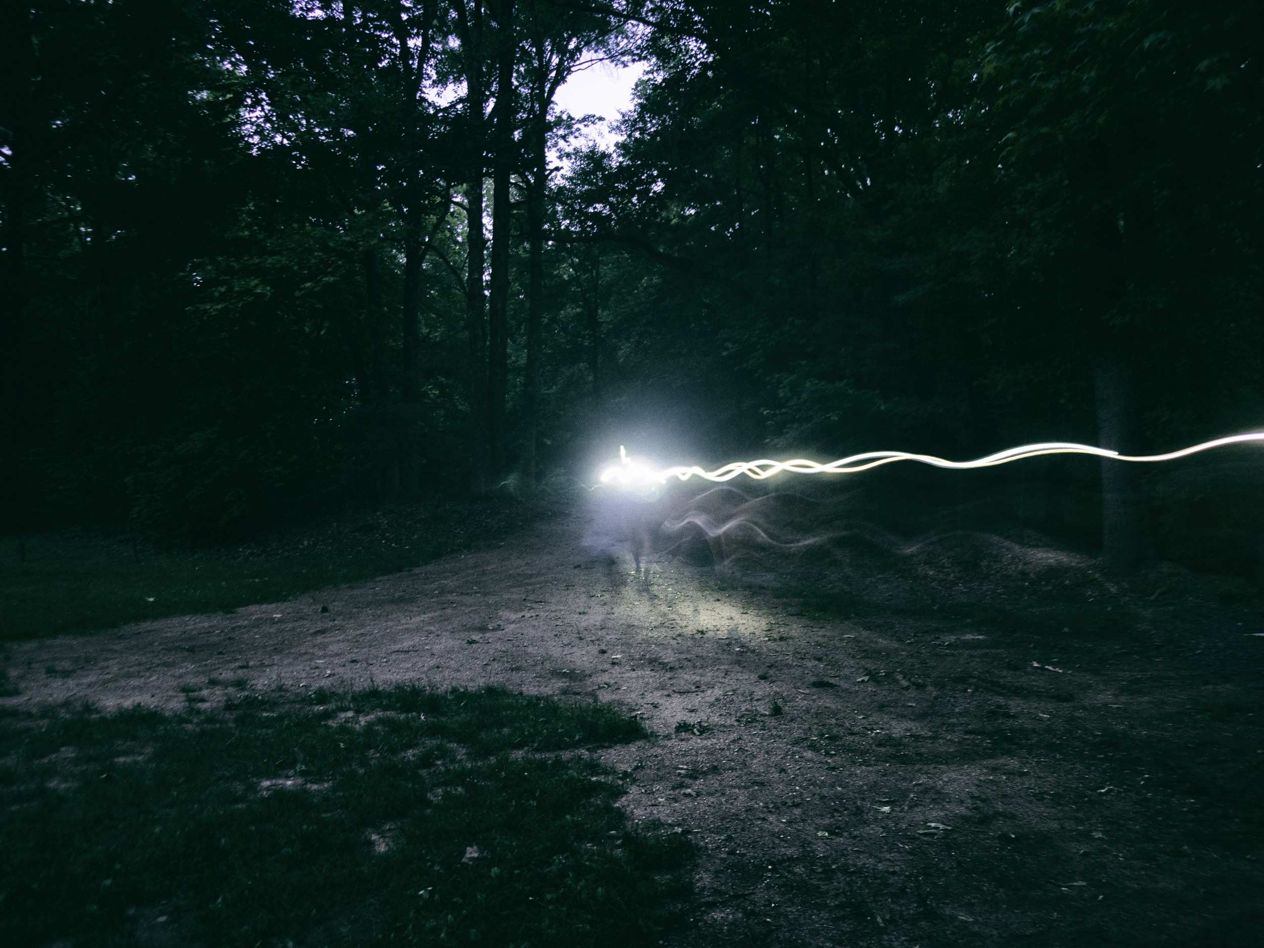 Headlamps on the move.. By Tom O'Hare