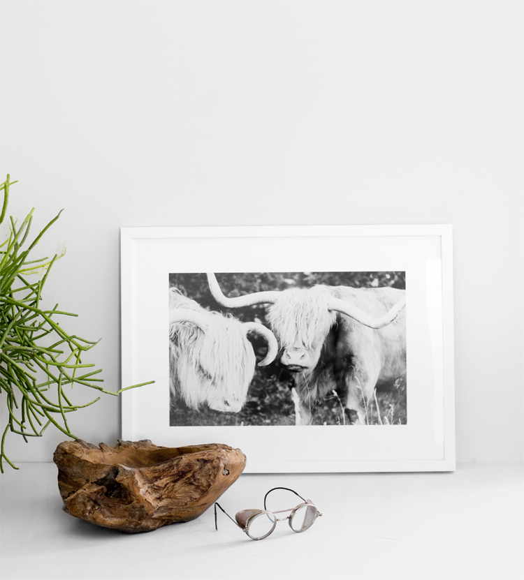 Veda House |Photo Styling for   Minted for West Elm