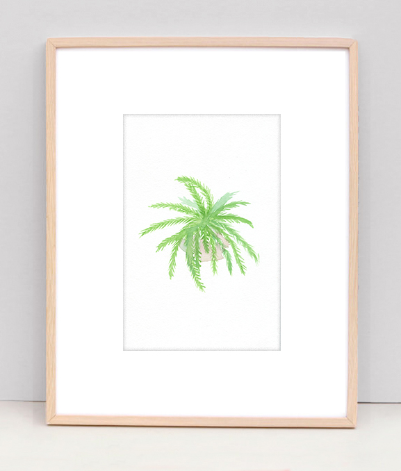 Fern-original-framed.jpg