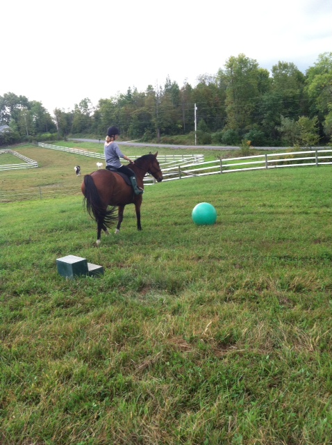 Juliet riding Skeeter in the open field in front of the barn