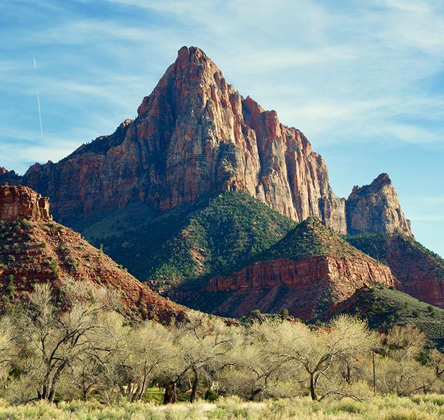 The Watchman in Zion National Park #watchman #zion #zionnps