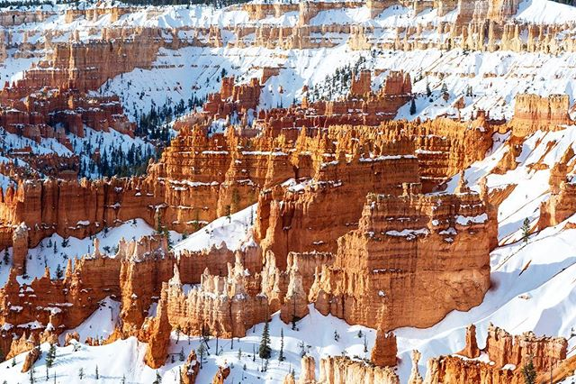Some Hoodoos in Bryce Canyon National Park. #brycecanyon #nps #nationalpark #utah @brycecanyonnps_gov