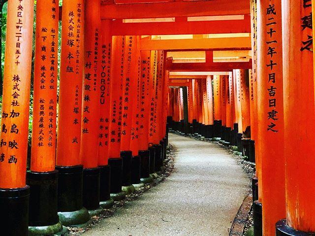 Hello Kyoto #fushimiinari #kyoto #japan