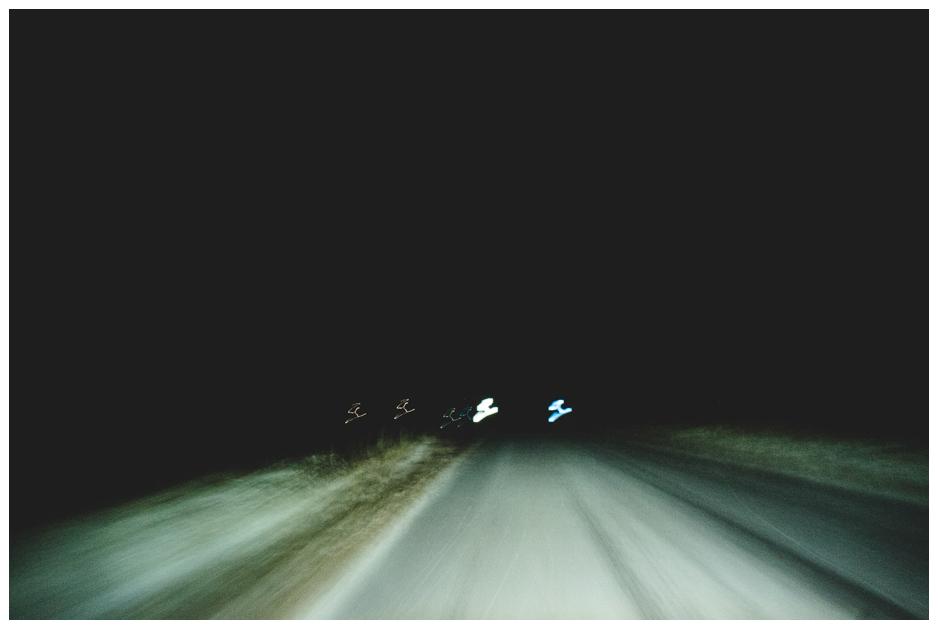 ©DWhitelaw_Distance-Web-6.jpg
