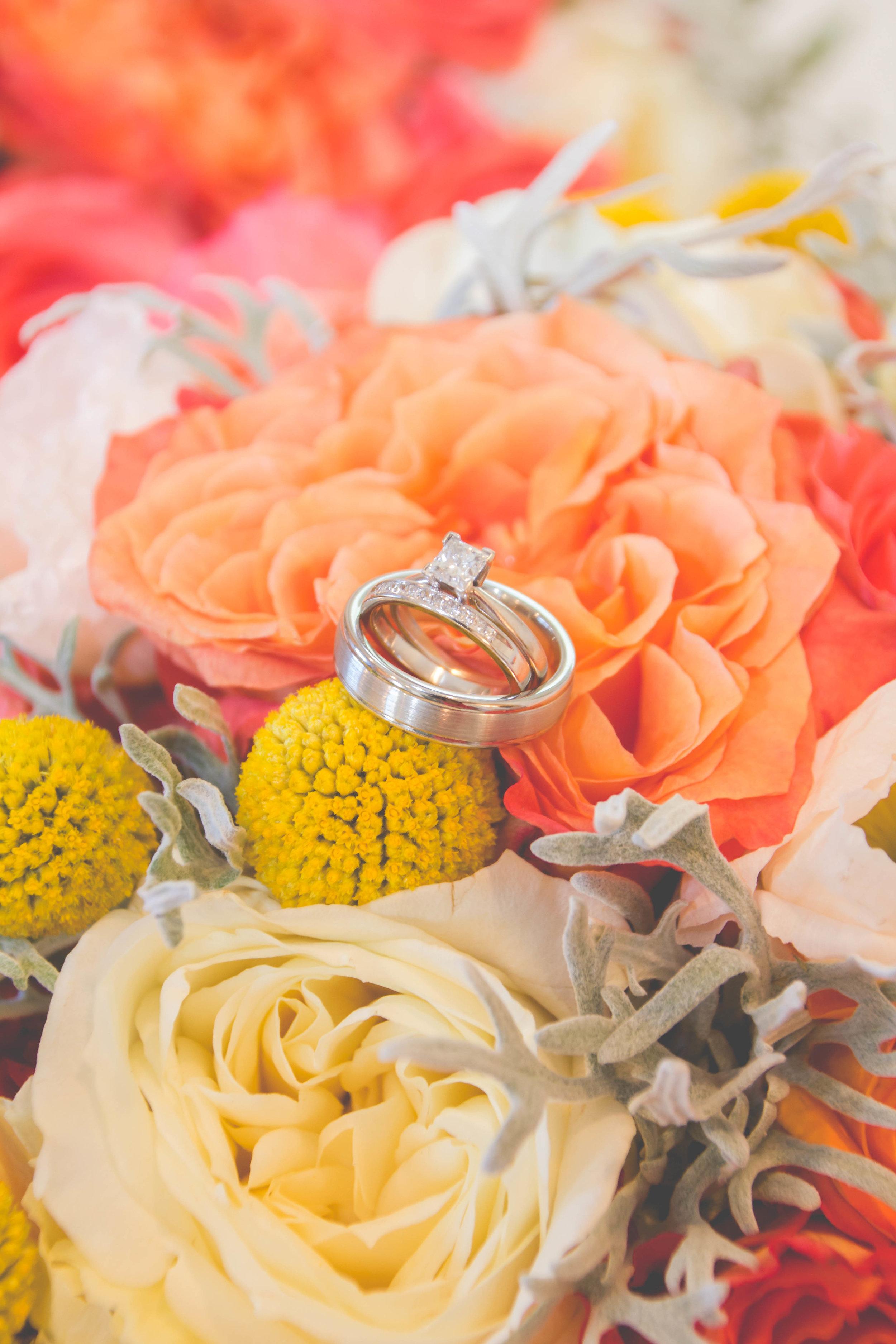 Willey Wedding (2).jpg