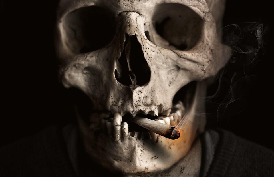 skull-and-crossbones-1418827_960_720.jpg