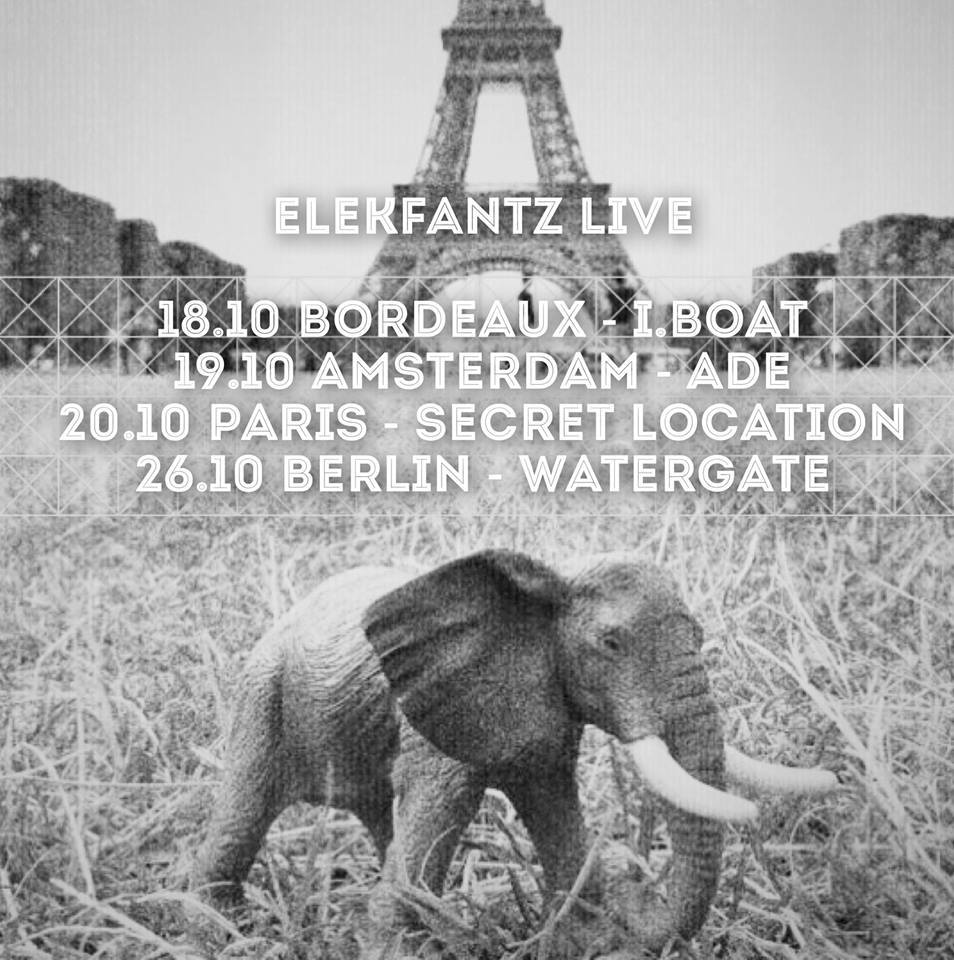 elekfantz first live shows.jpg