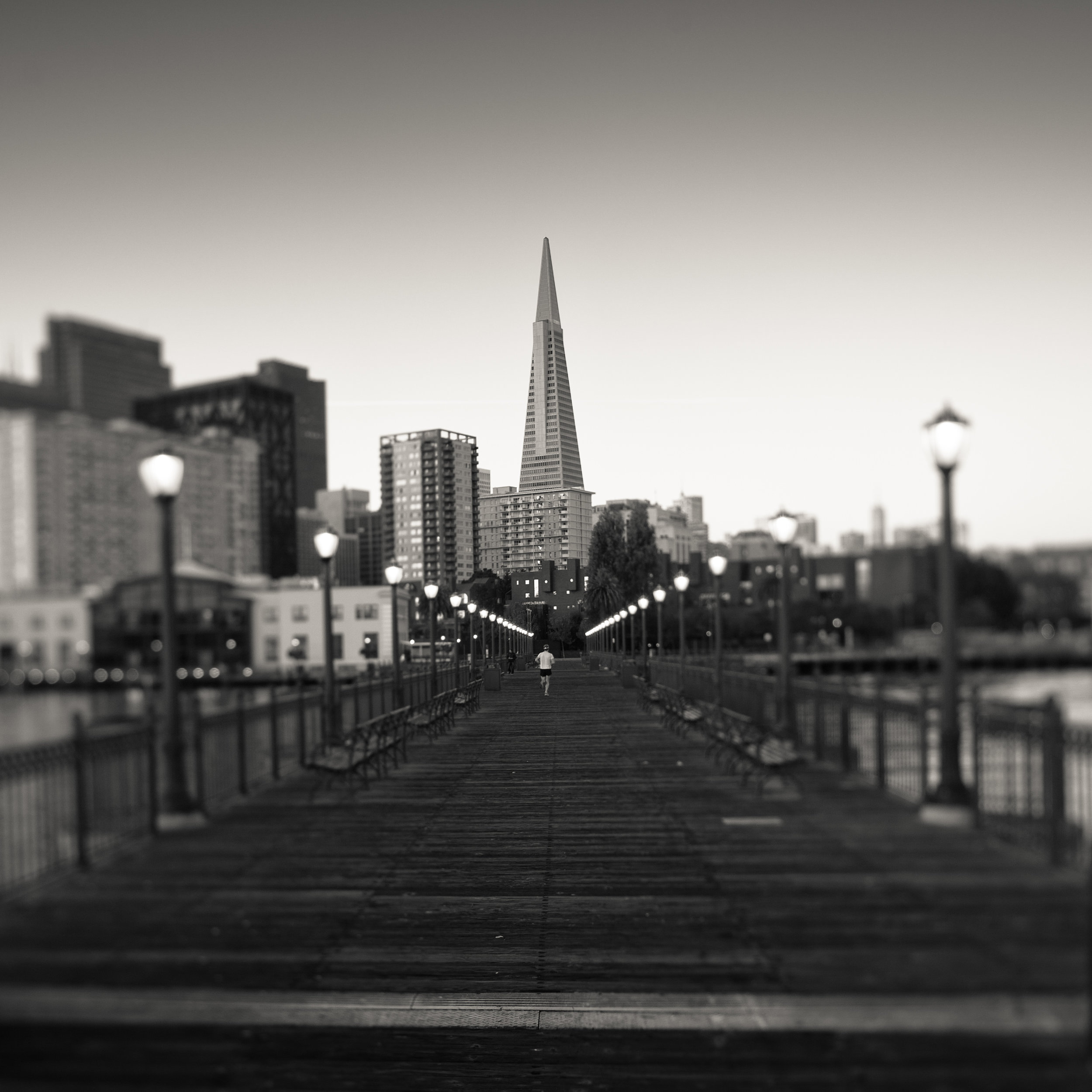 San Francisco embarcadero black white broadway pier transamerica pyramid runner starting line