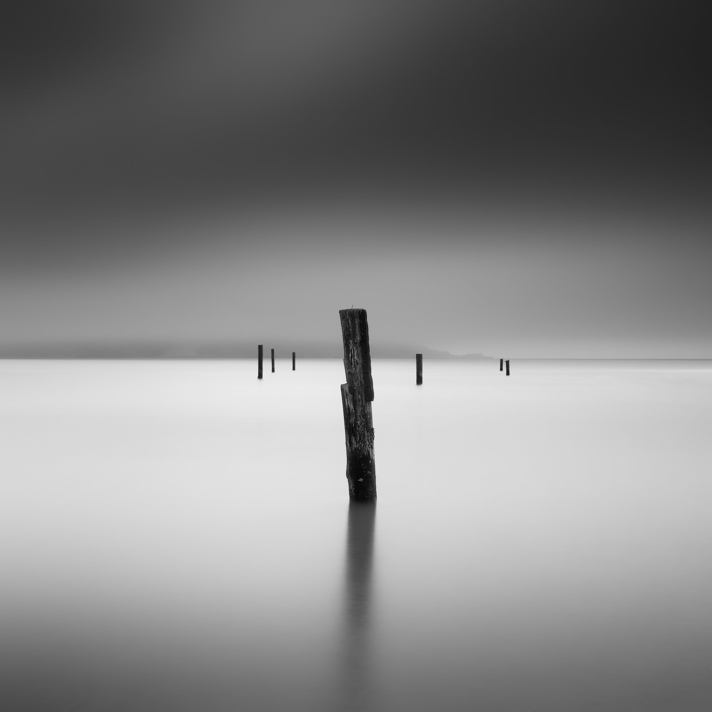 Sausalito black white pier pilings fog off balance