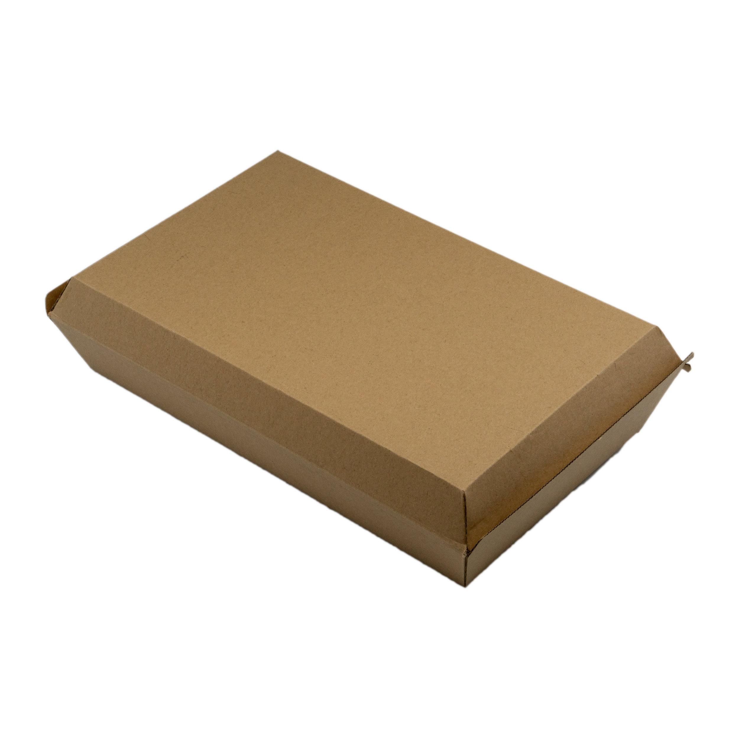 iK-EBFBX Family Box   290x170x85mm 2x50 slv 100pcs