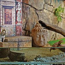 Otters Enclosure