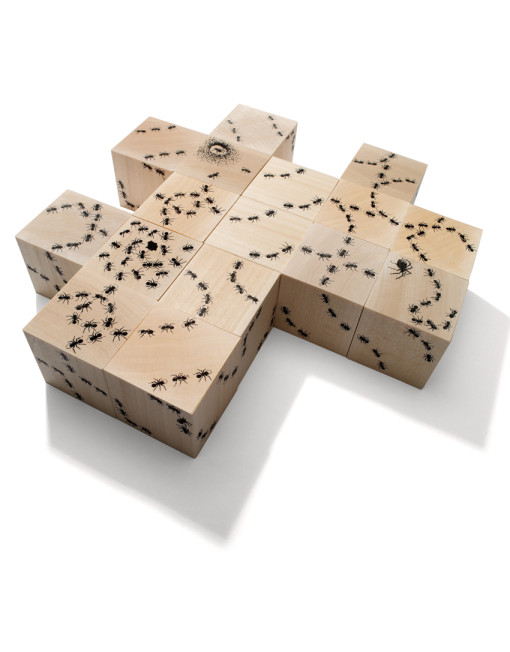 Bugs Puzzle  34€