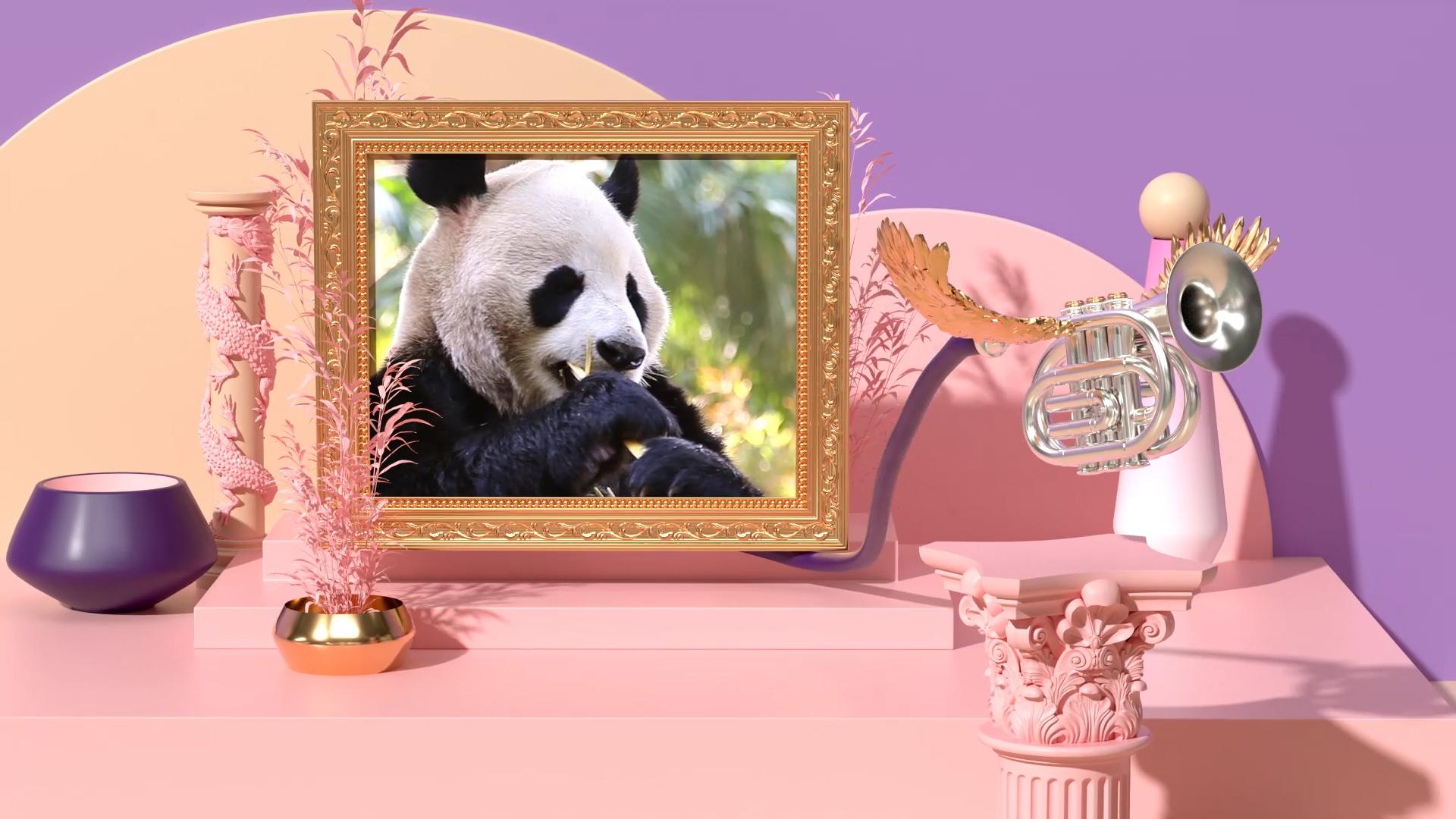 Wheyhey_02_Panda_1920x1080_25fps_h264.63.Still002.jpg
