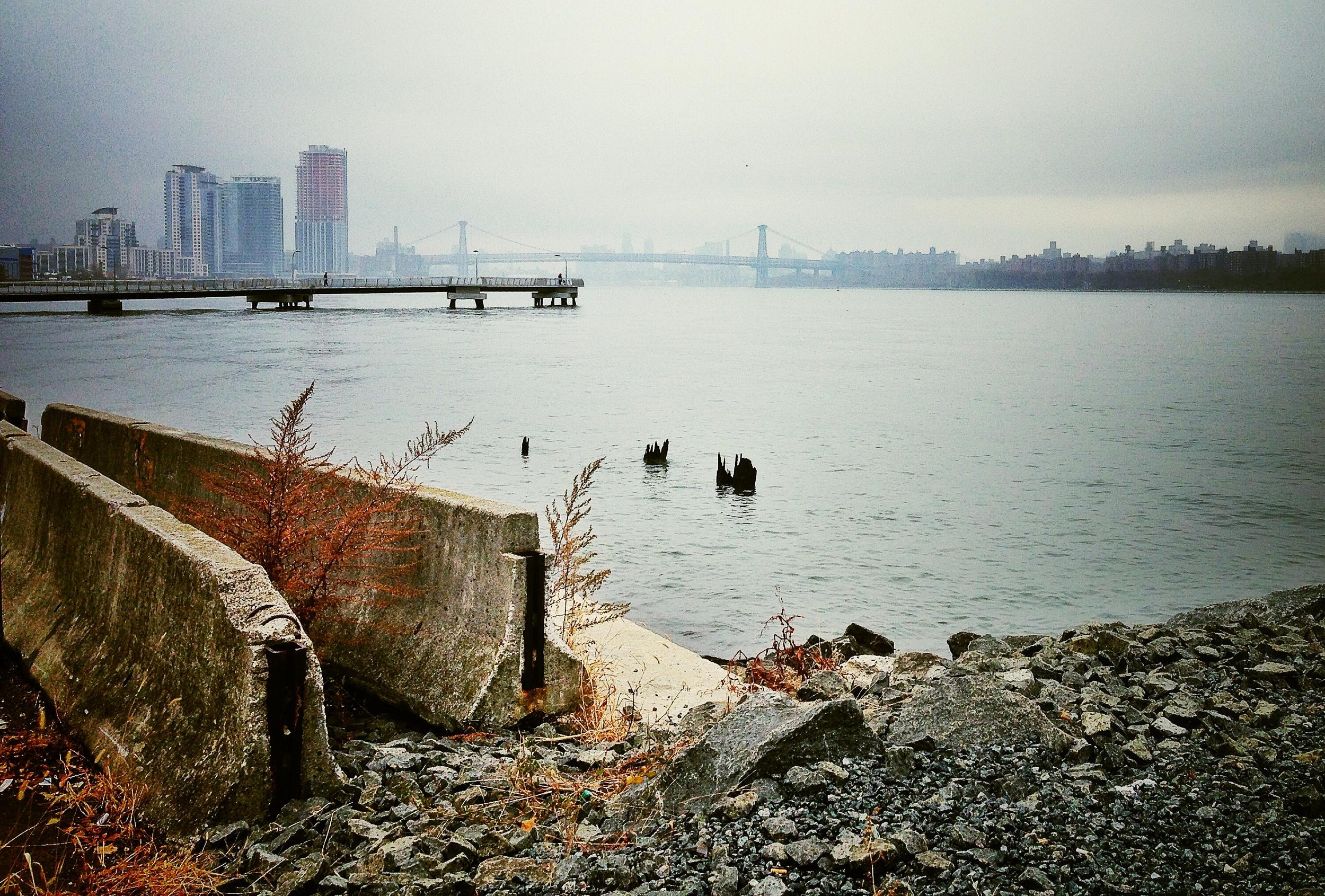 NYC in November