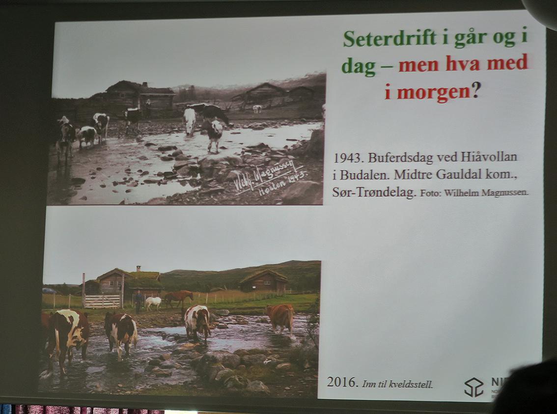 Her et av bildeparene fra Budal. Foto (nederst): Oskar Puschmann, NIBIO