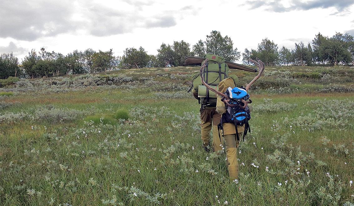 I Forollhogna er jegerne kjent for god og sikker jaktutøvelse. Sånn skal det også være i år! Foto: Arne Nyaas