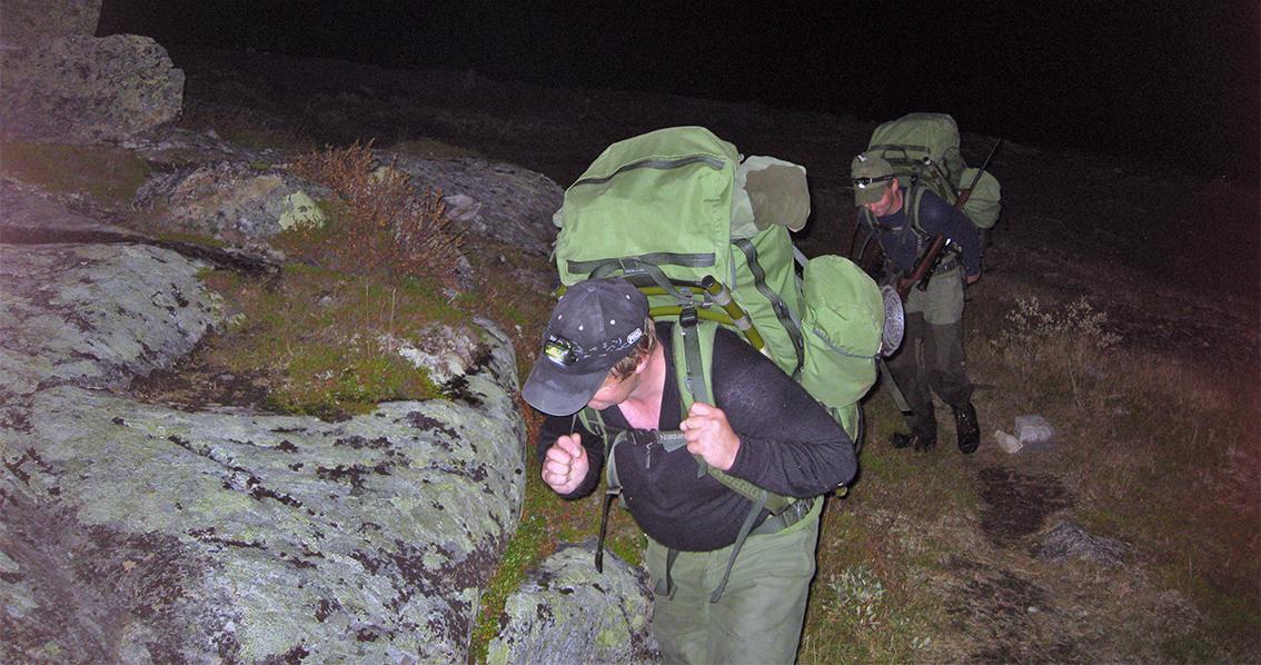 Bildet er fra villreinjakta i 2009. Her kommer to villreinjegere fra Dalsbygda med tunge sekker ned til parkeringplassen på Storhø i Rennebu. I sekkene var det en liten bukk og en kalv, felt på østsida av Sandfjellet. I dette området har det blitt felt flere dyr de siste dagene. Foto: Arne Nyaas