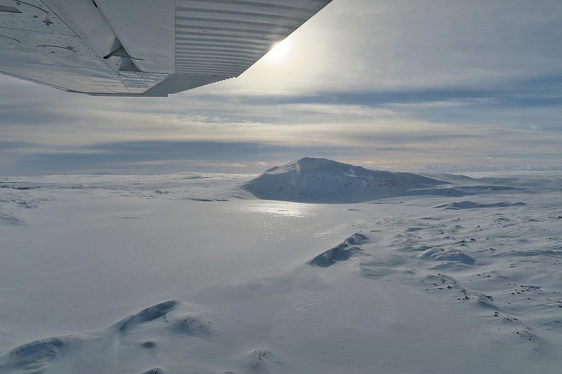 Sikre tilbakemeldinger på hvor villreinen står i området, er avgjørende før småflyet fra Røros Flyklubb går på vingene. Arkivfoto: Arne Nyaas