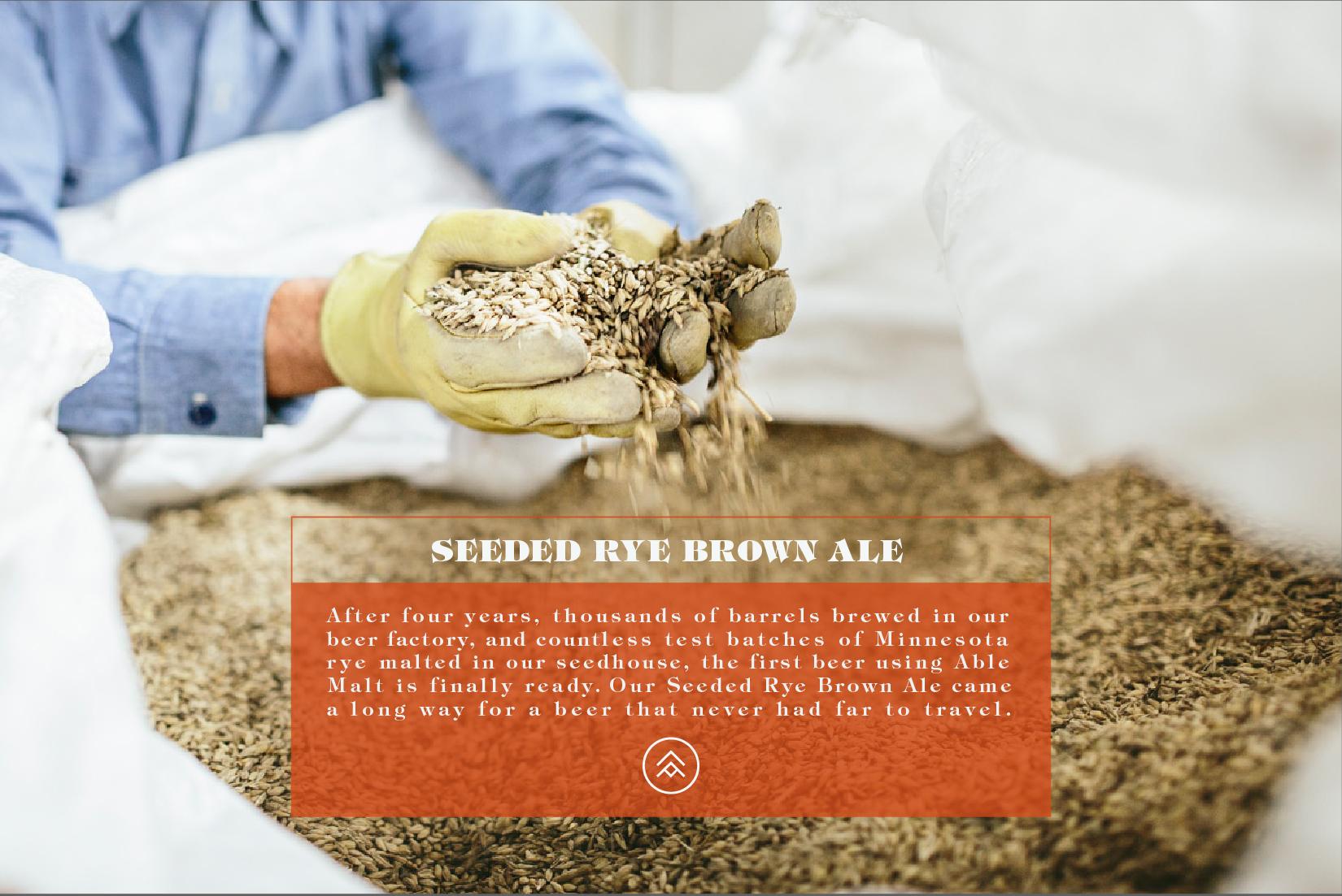 Seeded Rye - burnt-01.jpg