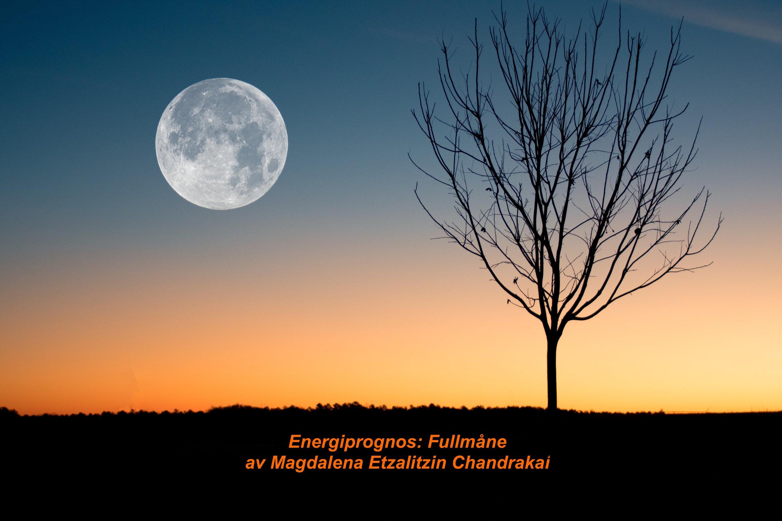 fullmåne-prognos.jpg