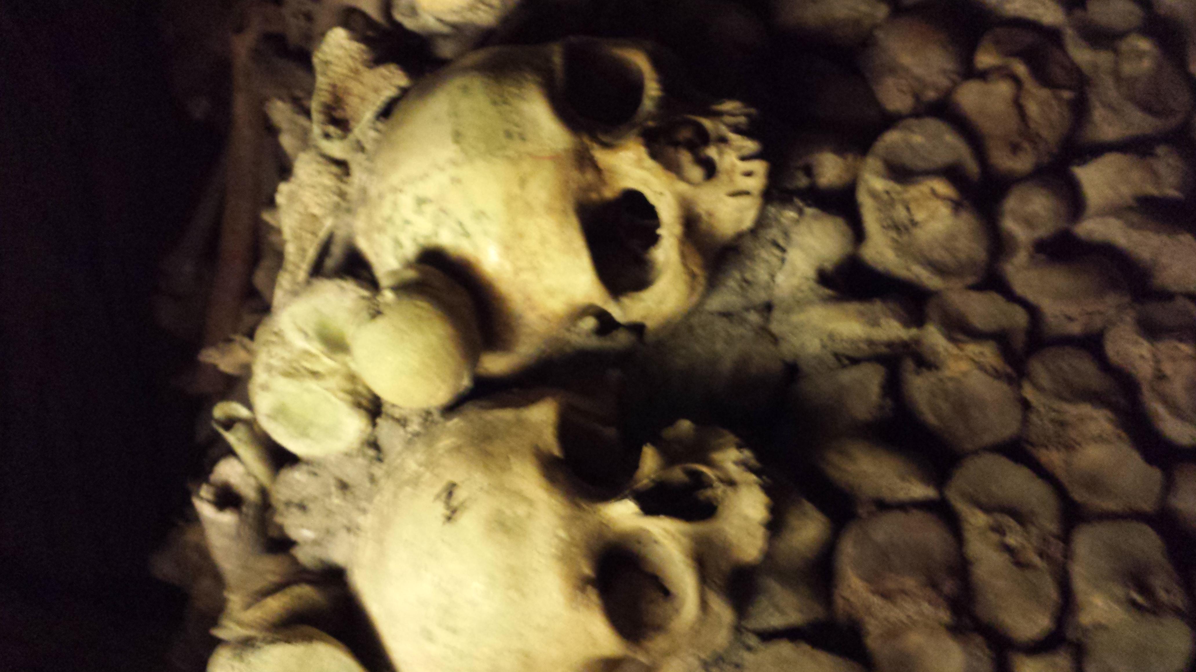 Les Catacombes Du Paris